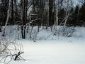 #6: West view. Heavy snow-drifts.