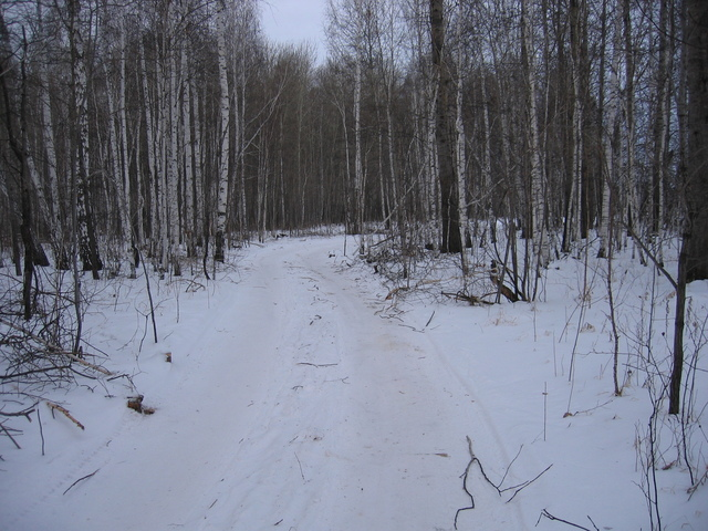 On our way to the next confluence. The road between two provinces, Kurganskaya & Sverdlovskaya oblast's. We decided not to return by major road (roundabout way) but to discover alternative shorter path