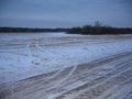 #8: Our track runs straight in the field, to the confluence