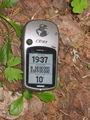 #2: GPS. All zeroes and a cheeky mosquito