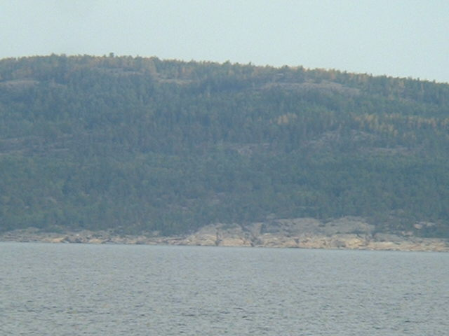 Densely wooded Gogland Island seen from the Confluence