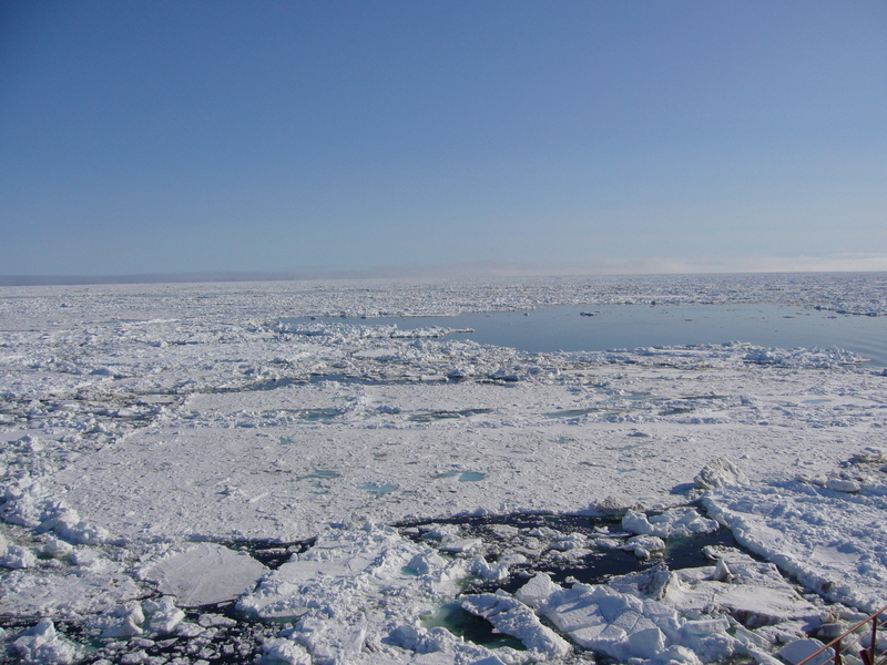 View south: sea ice on the Barents Sea