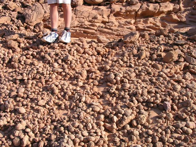 The strange sandstone balls that littered the ground at the campsite