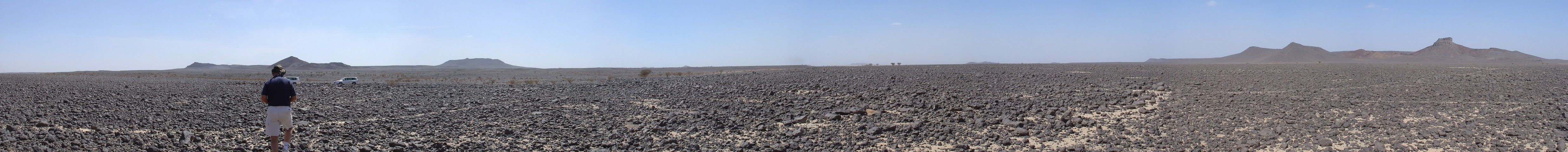 Panorama photo showing 'magnificent desolation'