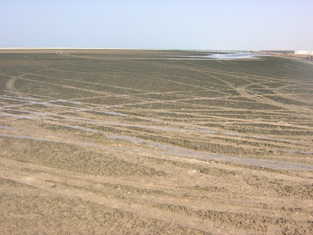 Sabkha near the track