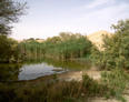 #4: Water ponds at the farming area