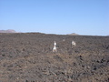 #7: An idea of the extent of the lava field to be crossed