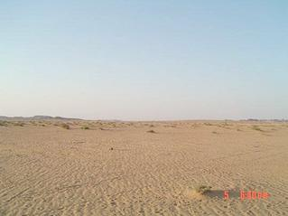 #1: North view, where Abraq al-Badī` can be seen