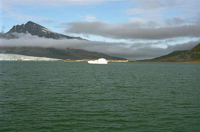View to the East of the confluence. An Iceberg in front of us