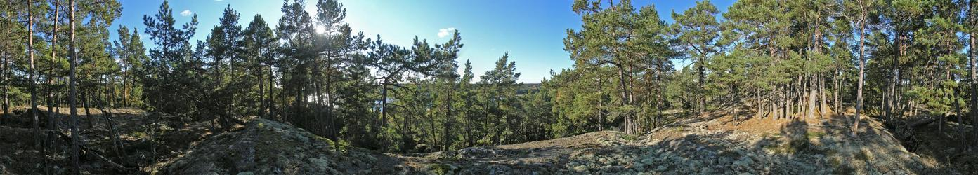 360-degree panorama from the top of the hill, about 20 m from the point