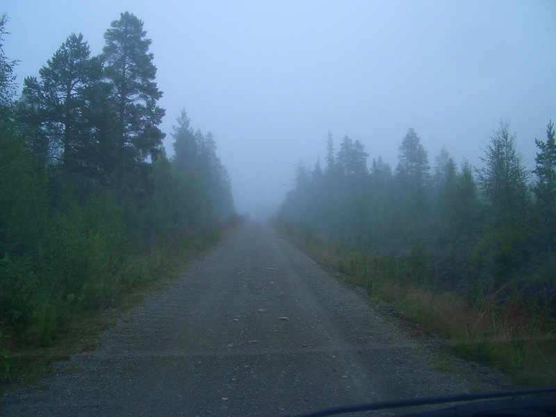 The Main forest road