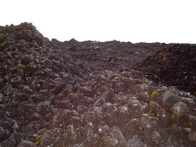 On the 1961 lava field