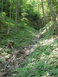 #1: The narrow valley with the dry stream (seen from the East). When there is water, there must be a waterfall over the big rock in the upper part of the picture.