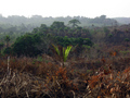 #8: Undulating hills and remnant woodlands typical of northern Sierra Leone