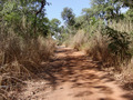 #7: Dirt road to the Confluence