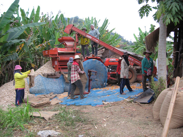Corn harvest; We saw this kind of tractor setups everywhere in northern Thailand