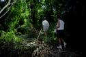 #7: Entering swamp/jungle on hike to confluence