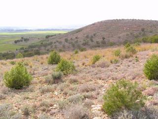 #1: General view of the Confluence (ca. 20 m away, direction NW)