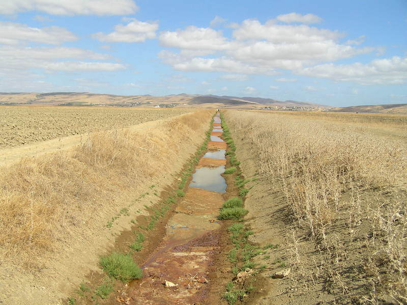 Irrigation ditch running northwest-southeast, passing 100 m from the Confluence (to the right).