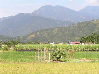#1: View to the north toward the confluence in the rugged terrain near Puli, Taiwan.