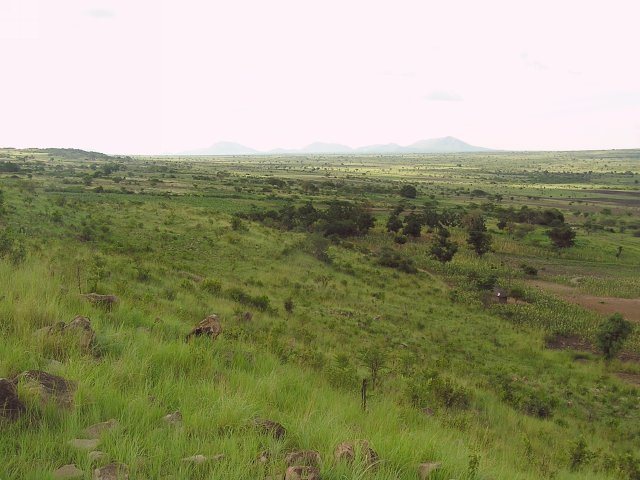 The view looking north into the agricultural land of the Wasukuma tribe.