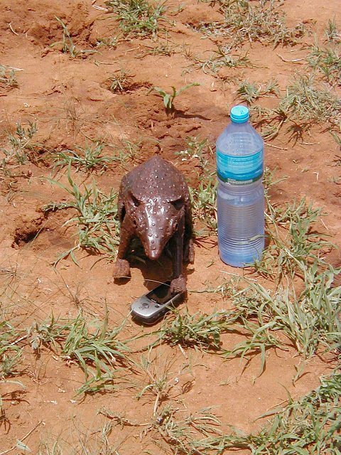 "Pimbi the Mascot says: ""Remember to hydrate thyself!"""