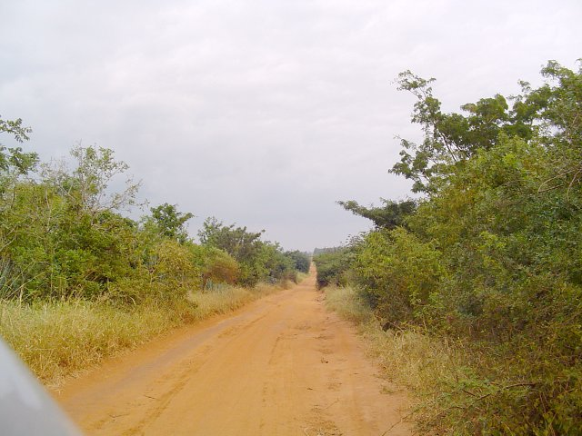 Taking a gravel road from Mombo straight towards the Confluence