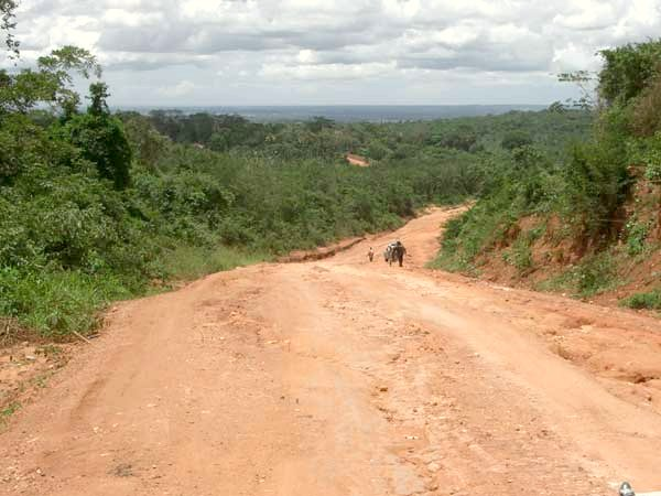 Area about 10 km NE of the Confluence, giving an impression of the road conditions and the vegetation.