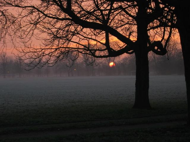 Sunrise in Southern London