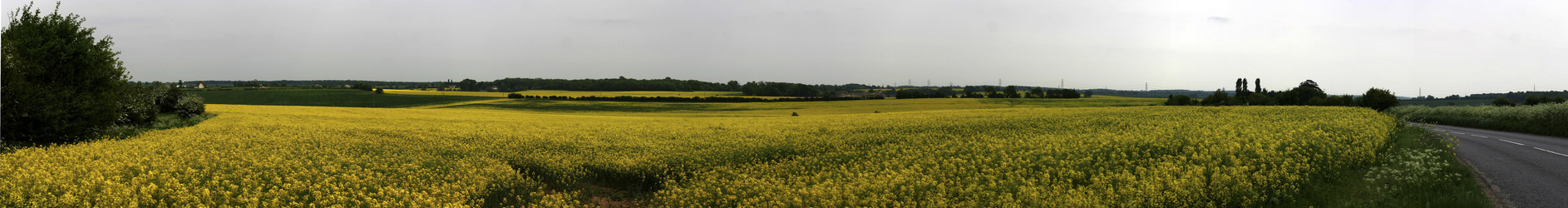 Panorama on way to CP