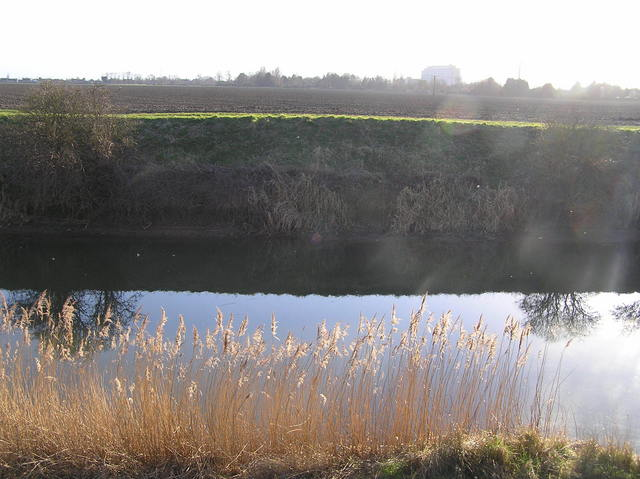 View to the south from the confluence across Cowbridge Drain.