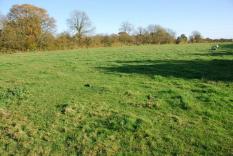 #1: What we thought was the general area of this concluence point - a cow pasture