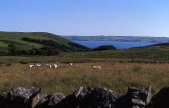 #1: View on Loch Ryan from 1 km west of the CP