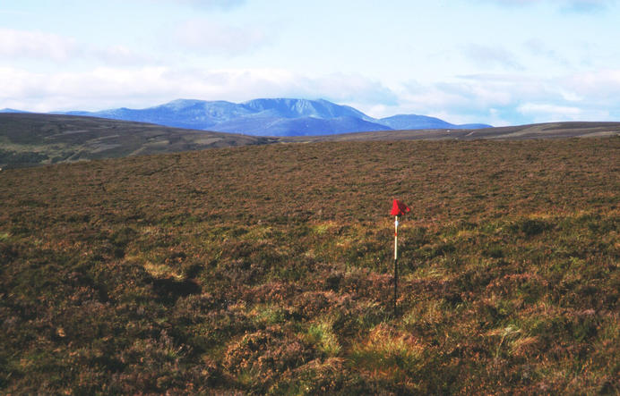 The pole and glove mark the spot. Lochnagar(1151m) in the background.(looking SouthWest)
