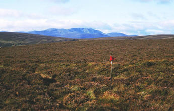 #1: The pole and glove mark the spot. Lochnagar(1151m) in the background.(looking SouthWest)