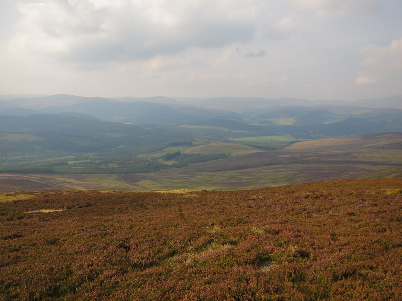 View of Glen Muick and Deeside from the track to Aultonrea