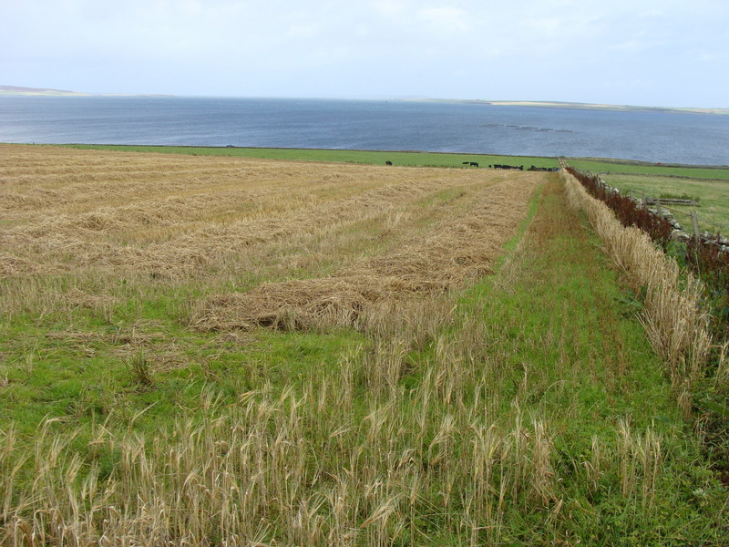 Looking over the approach route towards the Bay of Kirkwall.