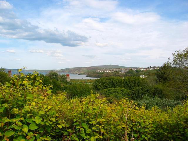 The Confluence - View to the East from 50m up a Hill