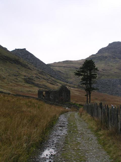 Ruined chapel built of stone rather than slate and a lonely tree