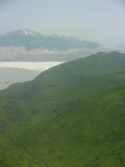 Although the CP is marked by green vegetation, it is surrounded on three sides by the Grand Plateau Glacier.