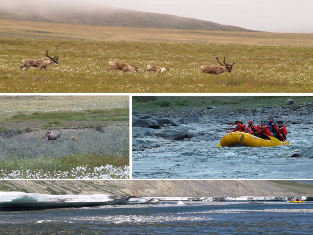The rest of the trip:  Caribou Pass, mother moose and calves, a hint of Class III rapids, and paddling through the aufeis.