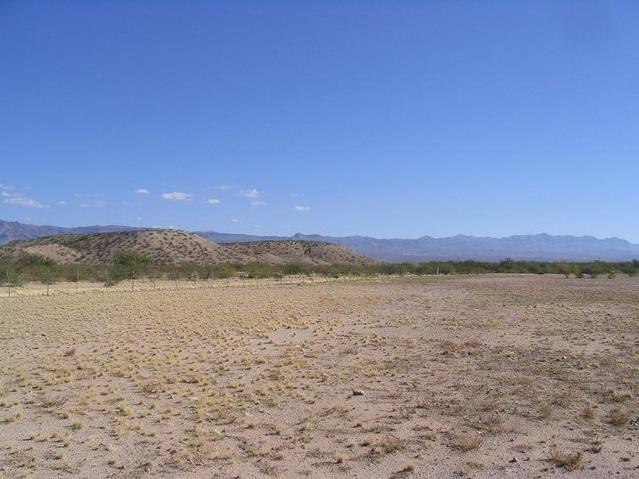 North view, toward the Gila Mountains