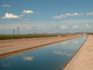#1: A canal, looking east from the confluence, carrying well water