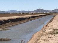 #9: View of the larger ditch to the south of the confluence, looking west.