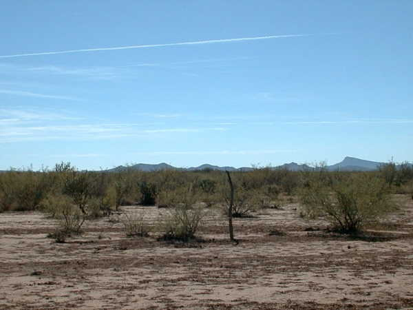 Flat desert surrounds the confluence
