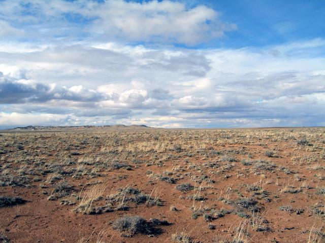 View north with Meteor Crater in the background