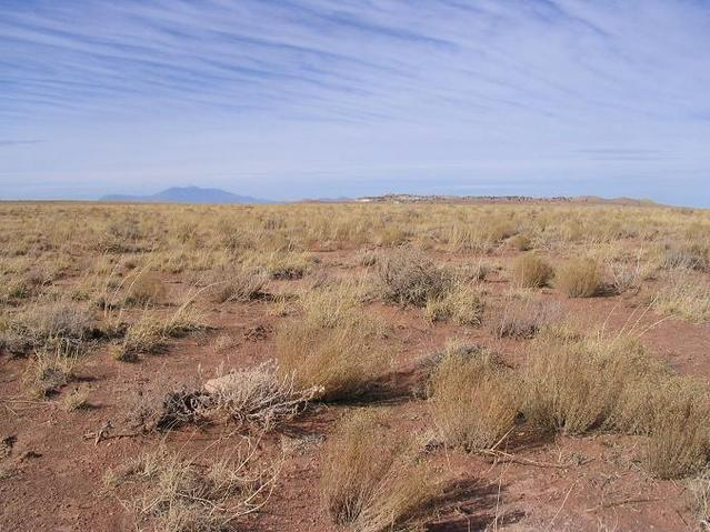 The West view (actually a bit northwest of west).  Humphreys Peak in the back, the meteor crater rim closer to us.