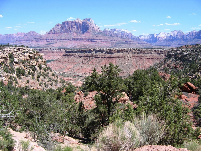 View of Zion from dirt road