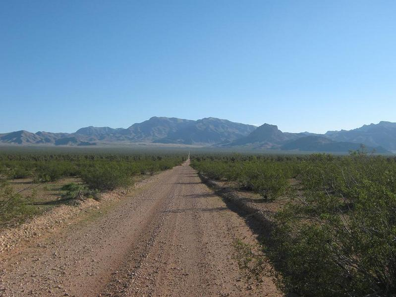Exiting along the dirt road, known as the Old Mormon Trail. In front are the southern peaks of the Beaver Dam Mountains.