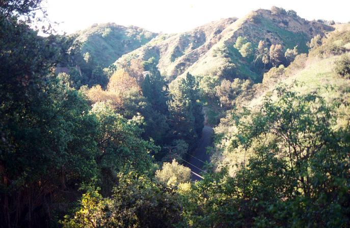 Looking up Oak Canyon with Oak Canyon Drive below.